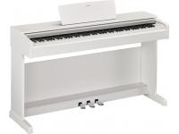 Yamaha YDP-143WH Branco Um grande instrumento tanto para o iniciante como para o pianista em formação.     O Arius YDP-143 junta a herança dos pianos acústicos da Yamaha com a tecnologia digital mais r...